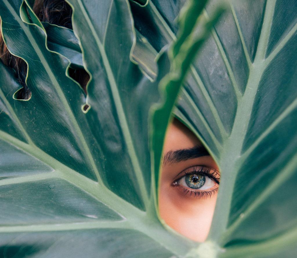hojas verdes y ojo de fondo